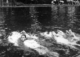 swim-race