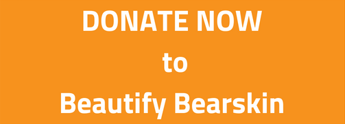 Donate now to Beautify Bearskin