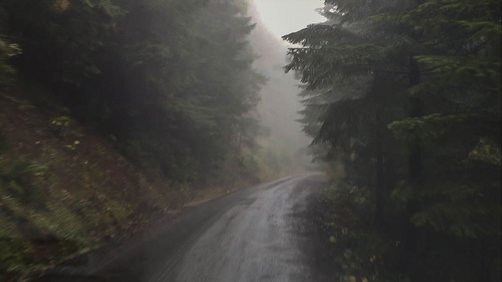 Oregon Coast Mountain