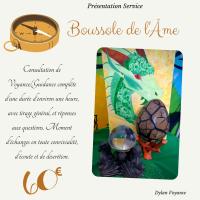 """Consultation complète """"Boussole de l'âme"""""""