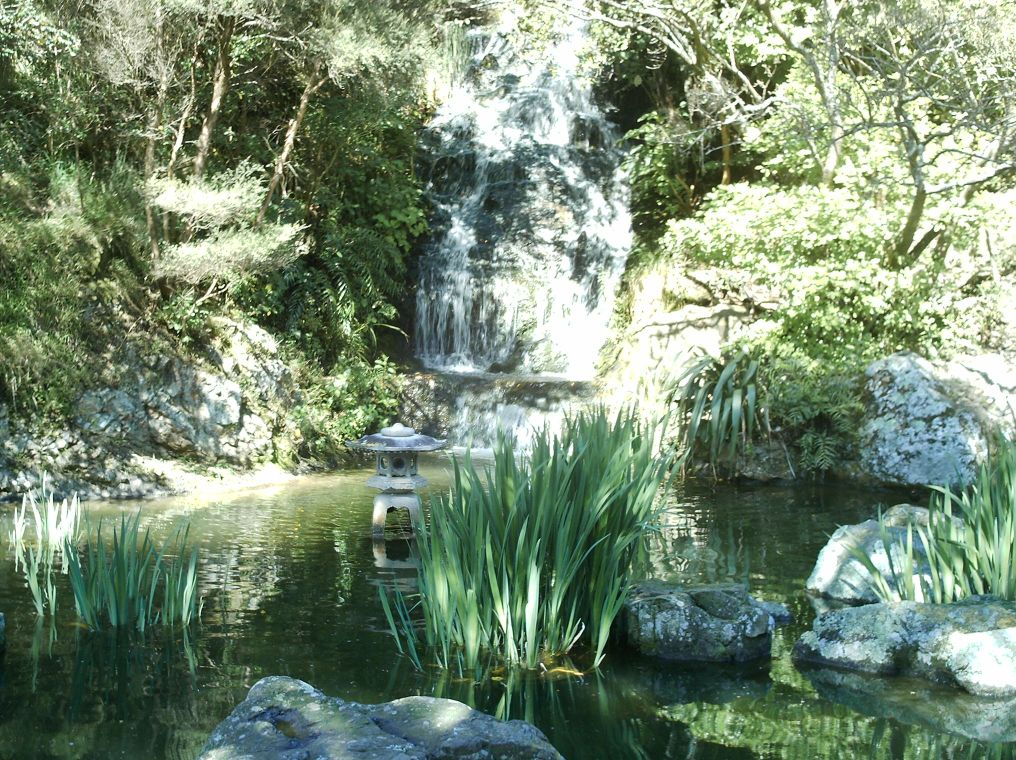 Garden in Wellington