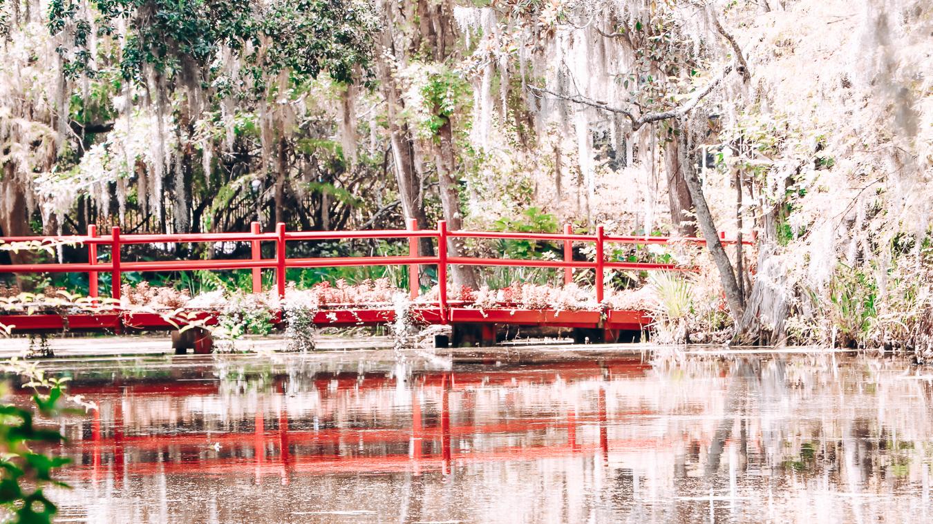 Gardens in Charleston