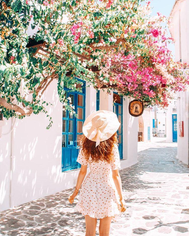 Flowers in Milos