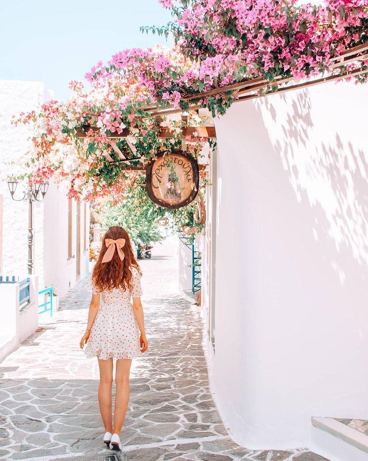 Flowers in Plaka on Milos