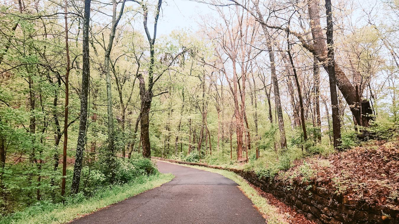 Percy Warner Park in Nashville
