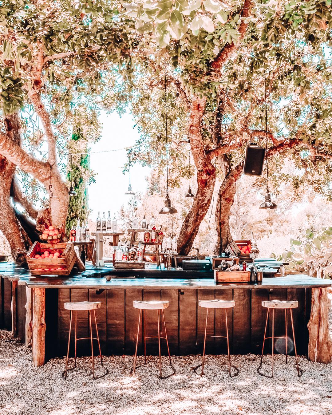 Bar and trees at La Granja Ibiza