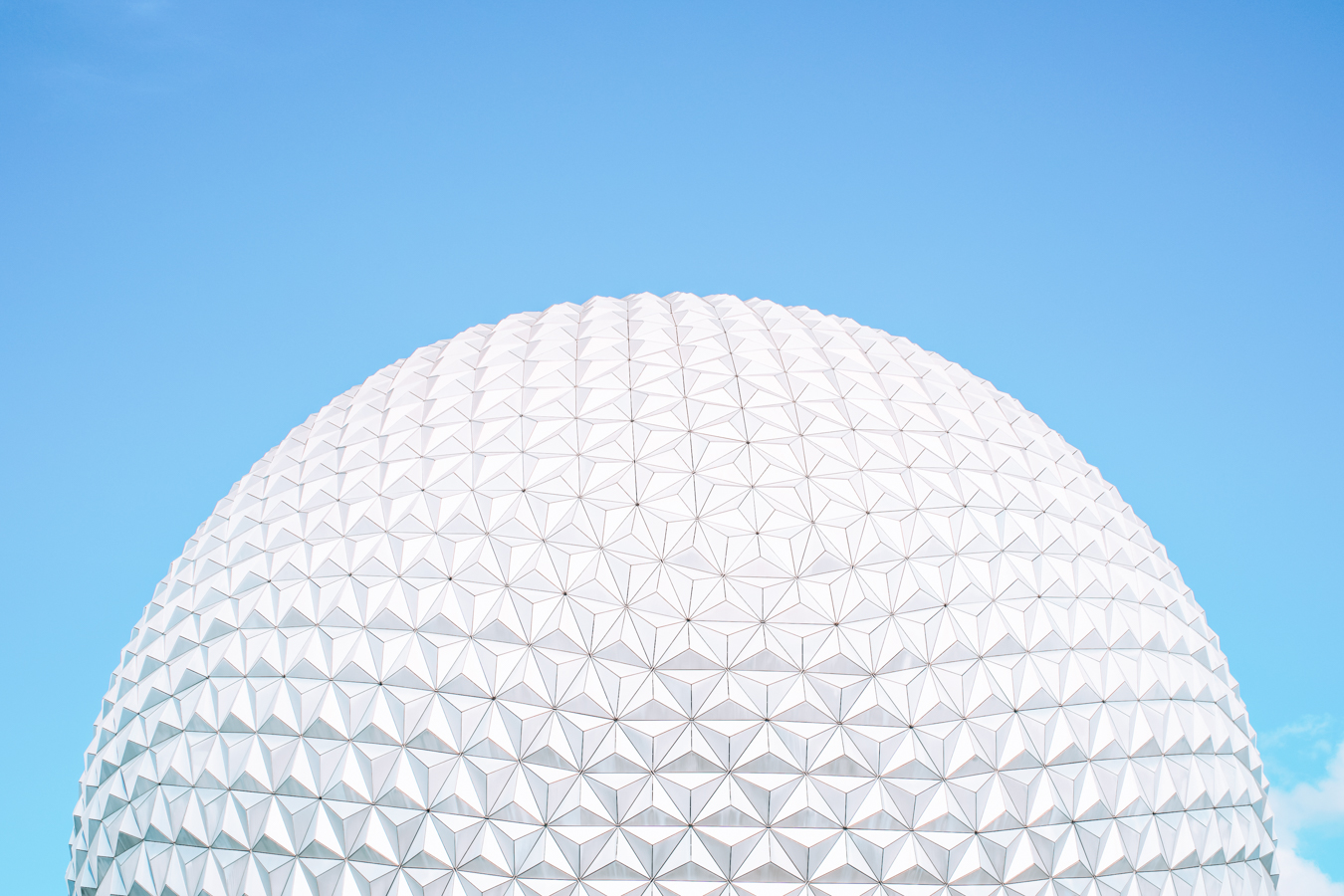 Epcot ball and flowers