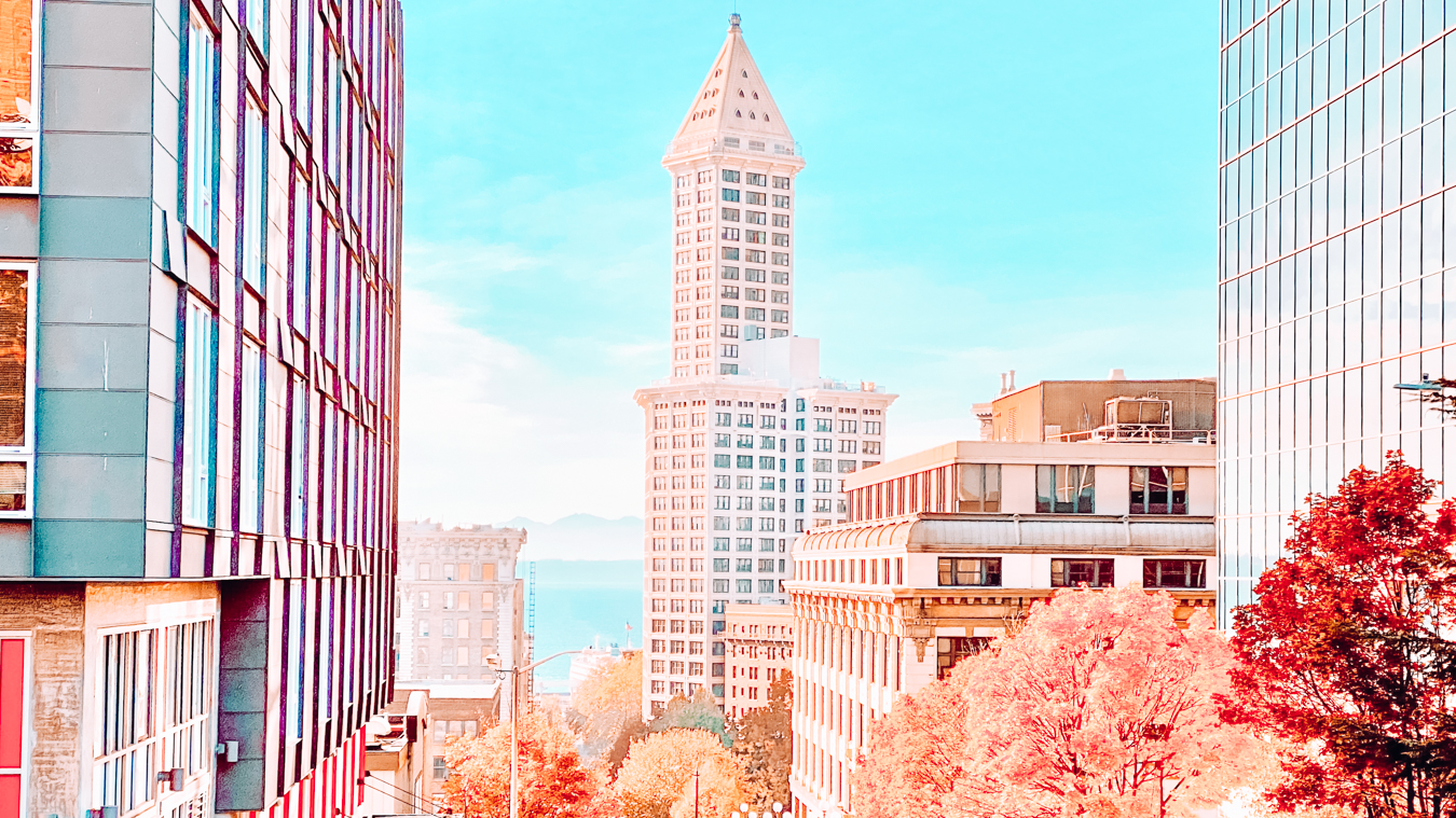 The Smith Tower