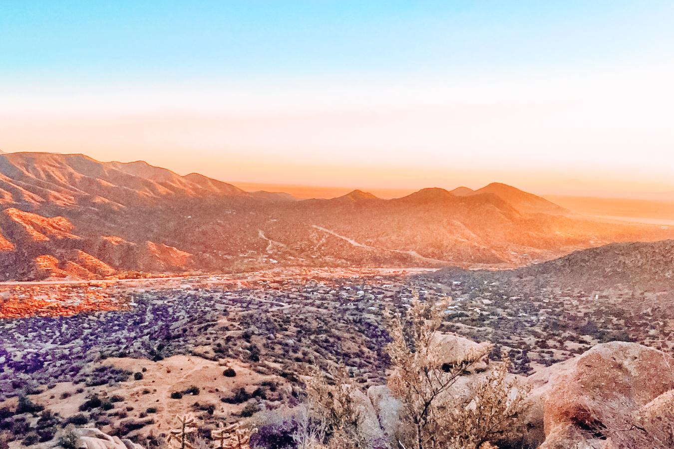 Nature in Albuquerque