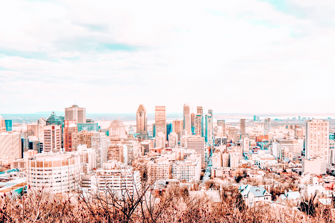 A view of buildings in Montreal