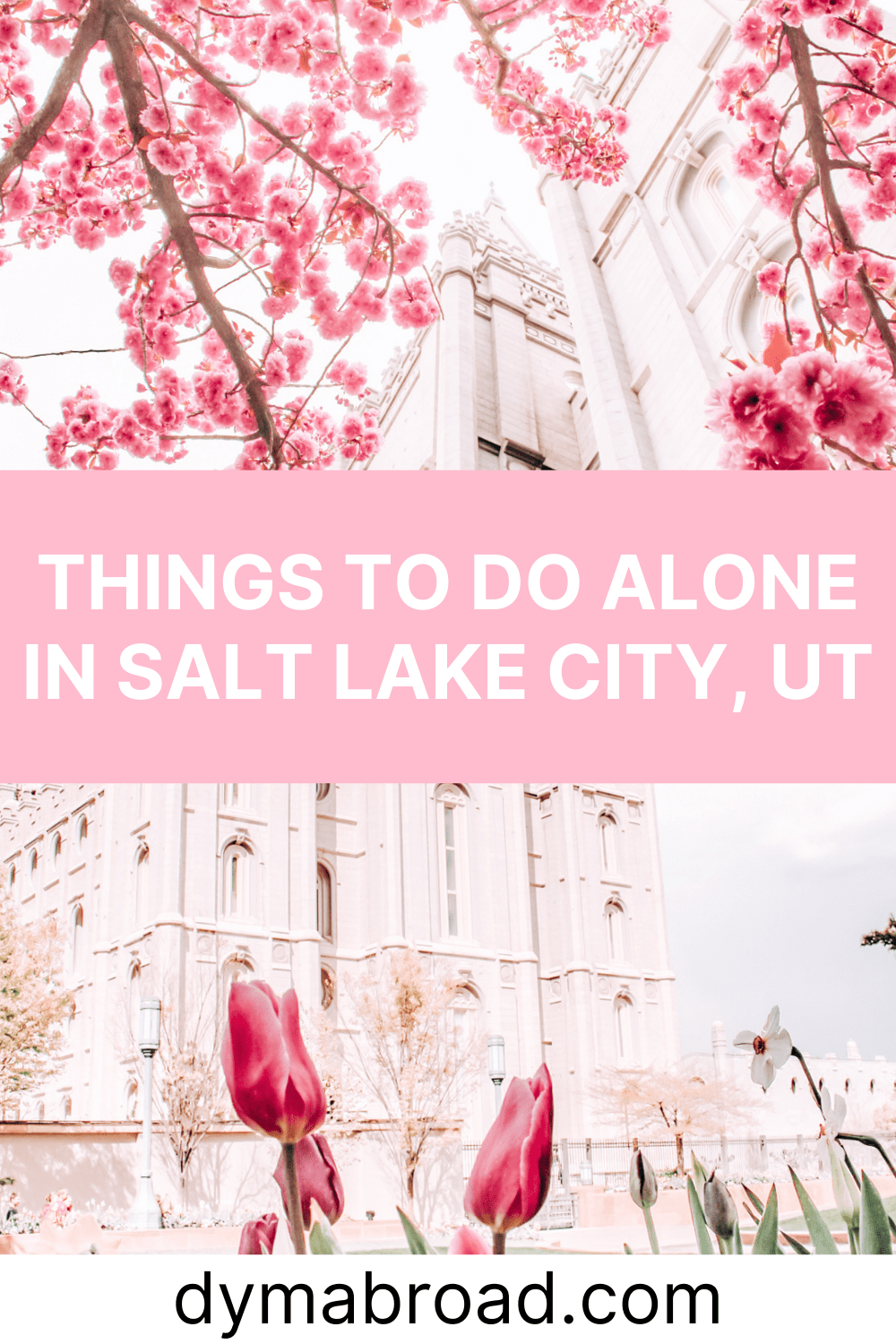 Things to do alone in Salt Lake City Pinterest image