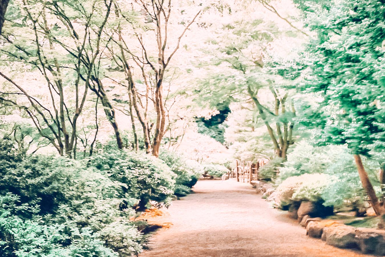 Path in Portland Japanese Garden