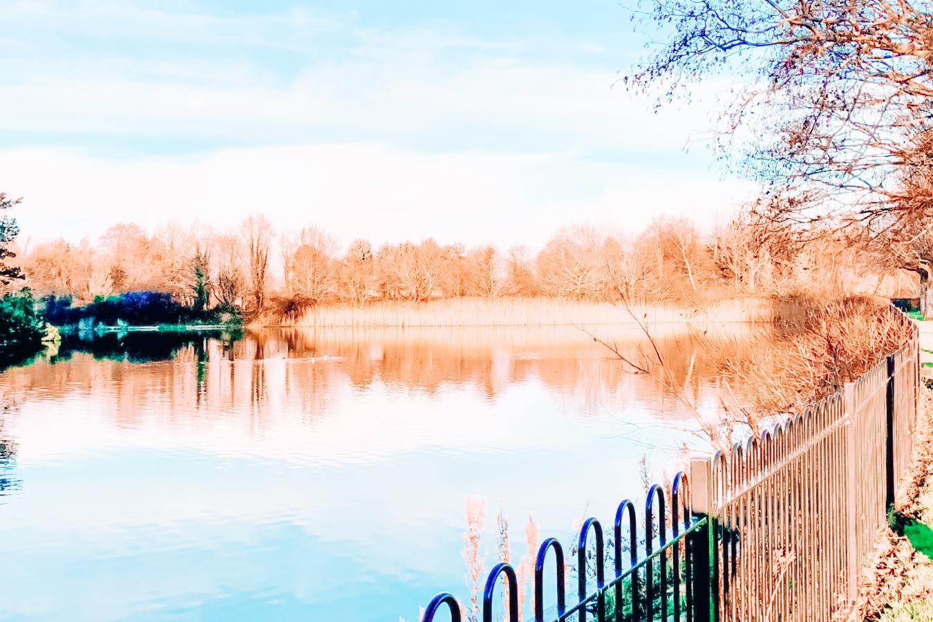 Victoria Park in Belfast