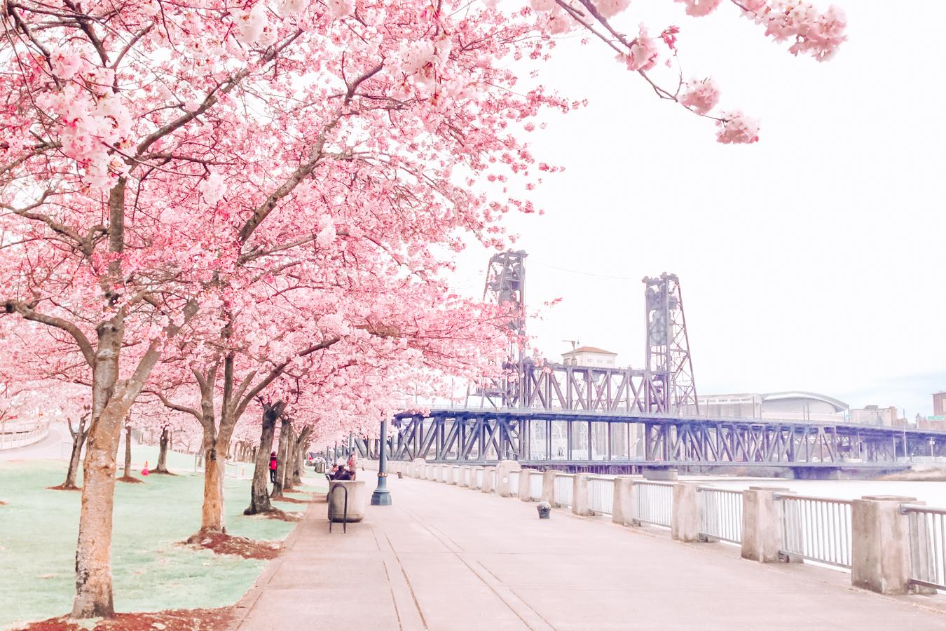 Waterfront park in Portland