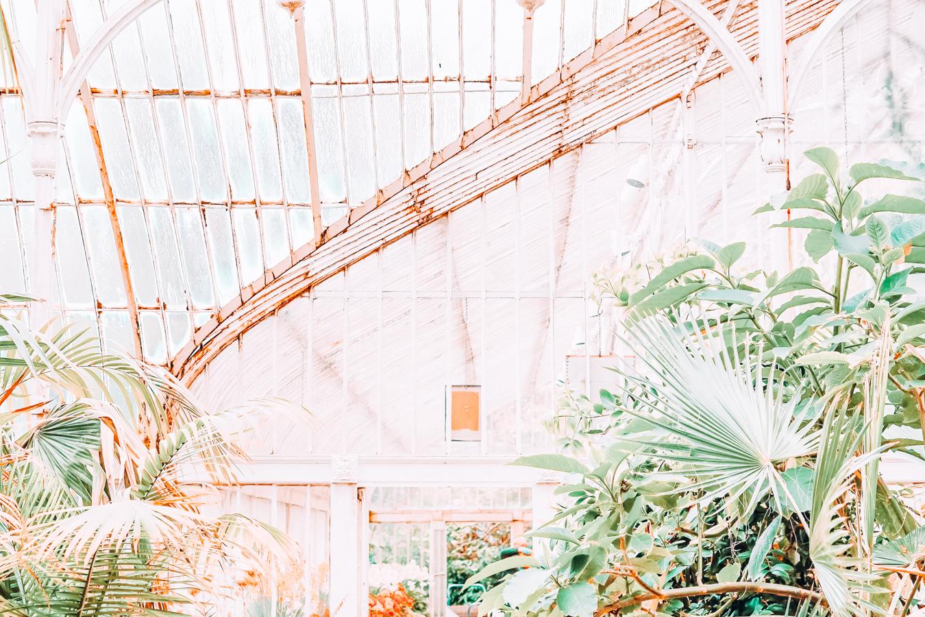 Botanic Gardens of Belfast