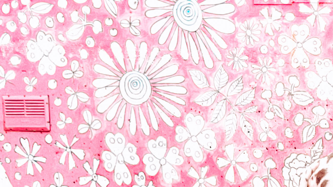 Instagrammable pink wall in Seattle