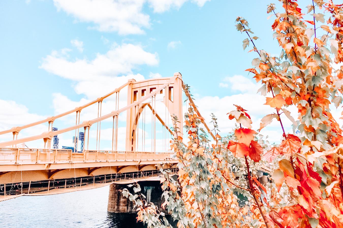 Yellow bridge in fall