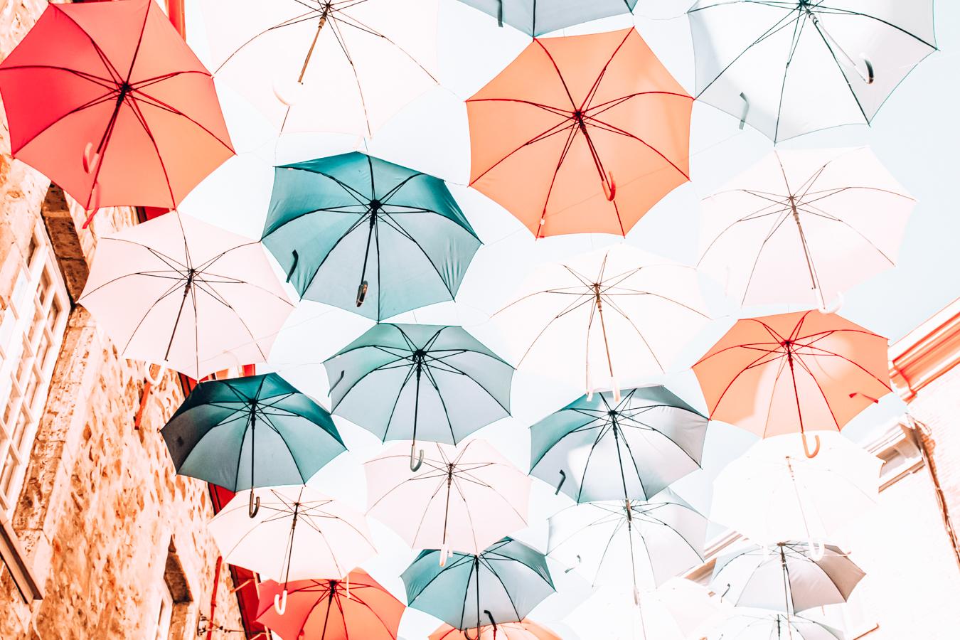 Umbrellas in Quebec City