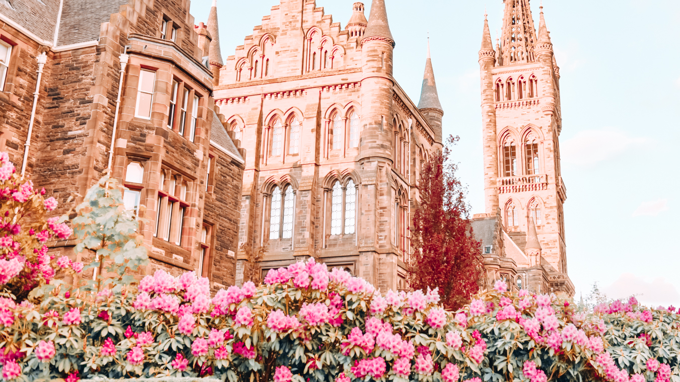 Flowers and a building in Glasgow