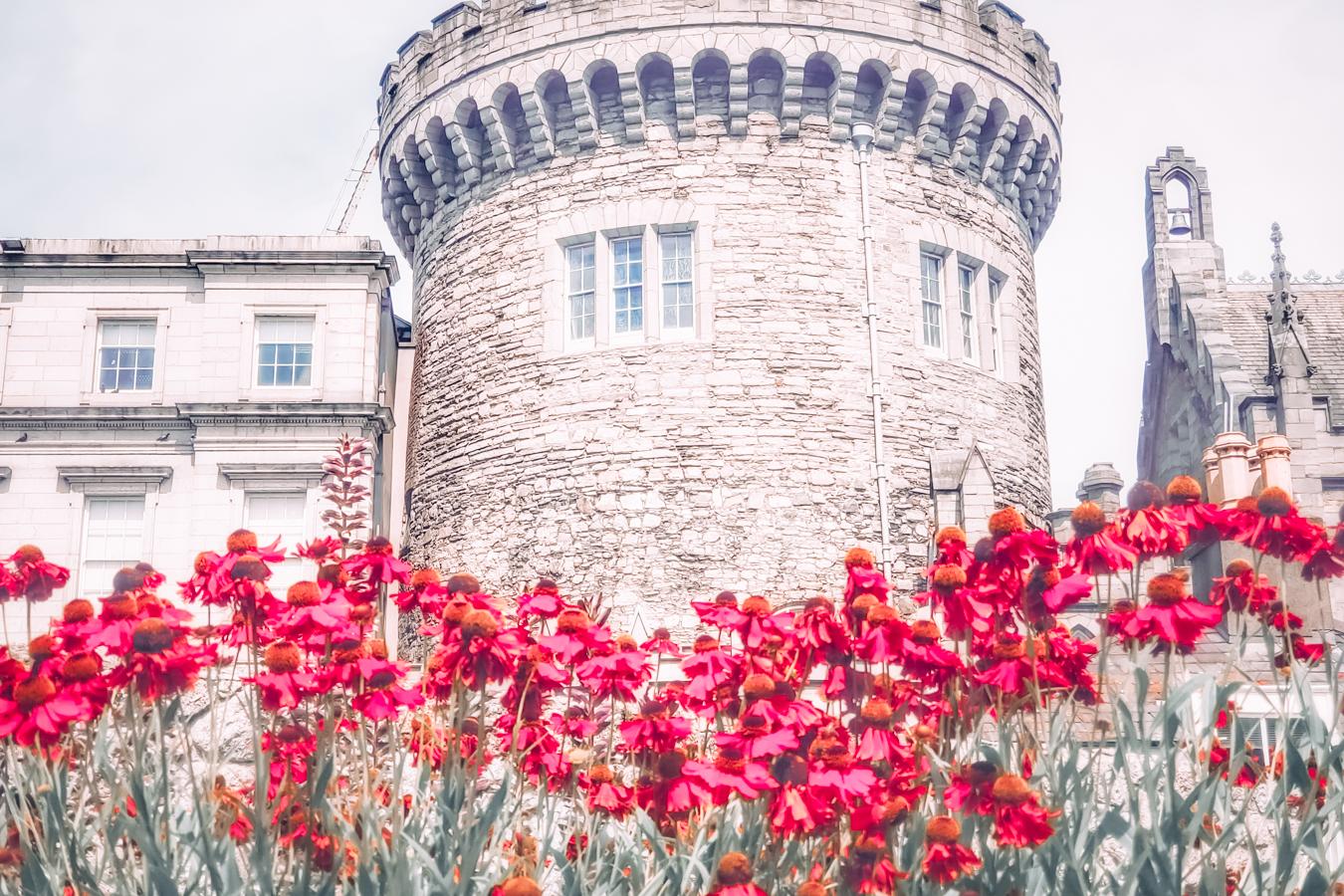Dublin Castle and flowers
