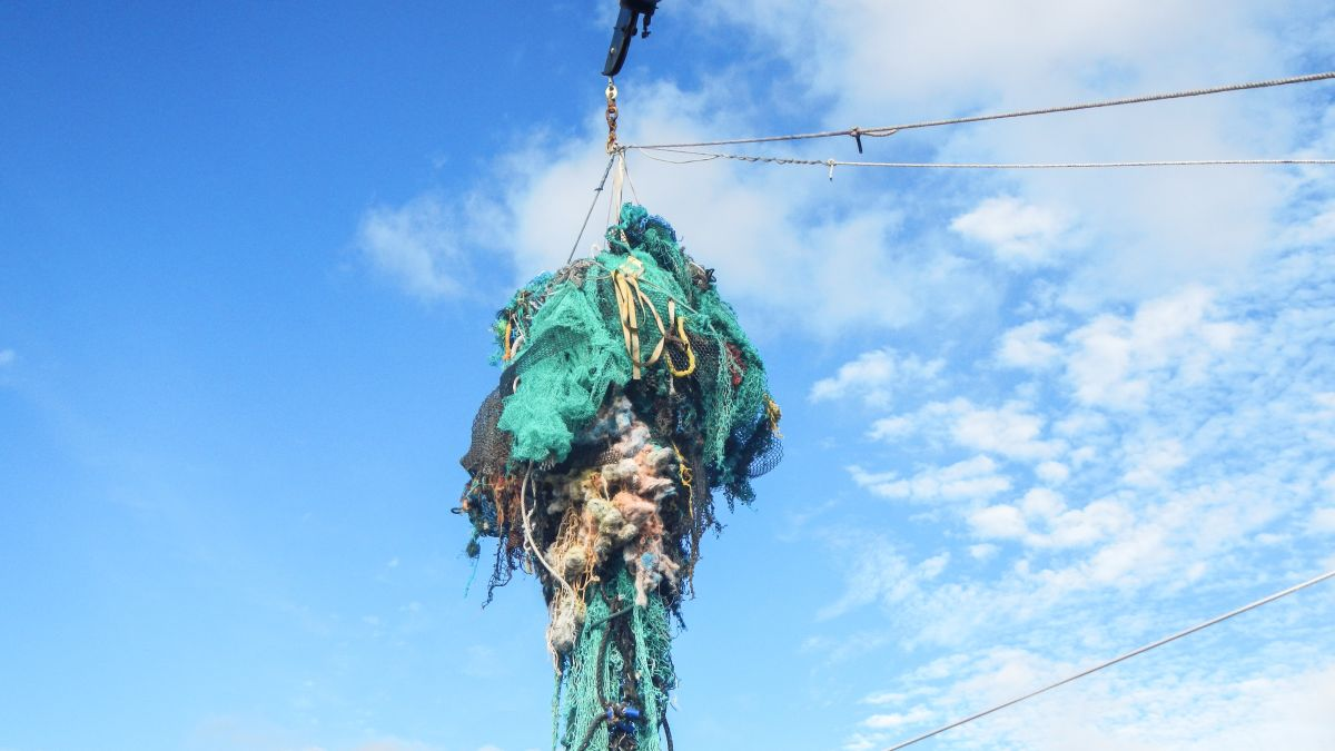Great Pacific Garbage Patch Now Three Times The Size Of France Cnn