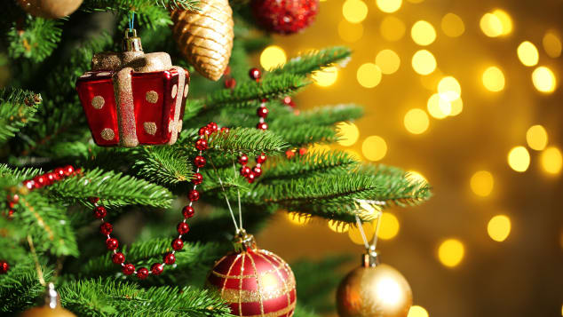 Decorated evergreen trees have roots that go back beyond the beginnings of Christianity to ancient Egypt and Rome.
