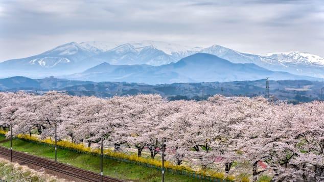 この道は俳句詩人松尾芭蕉1689がたどる道をたどる。