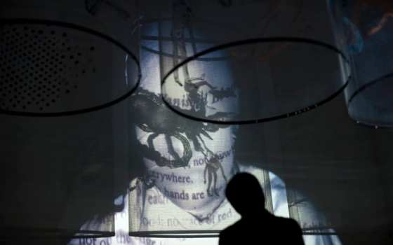 """Artist Nalini Malani has been using video as an artistic medium for decades. Above is an image of her video-shadow play """"In Search of Vanished Blood,"""" on display in Germany in 2012."""