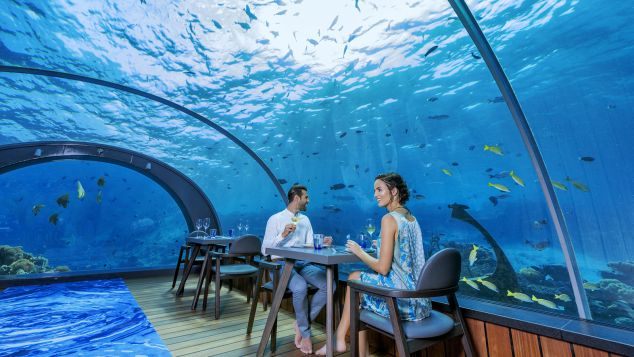 Maldives Hurawalhi  Undersea Restaurant 4