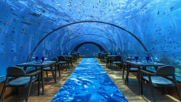 Maldives Hurawalhi  Undersea Restaurant Interior 1