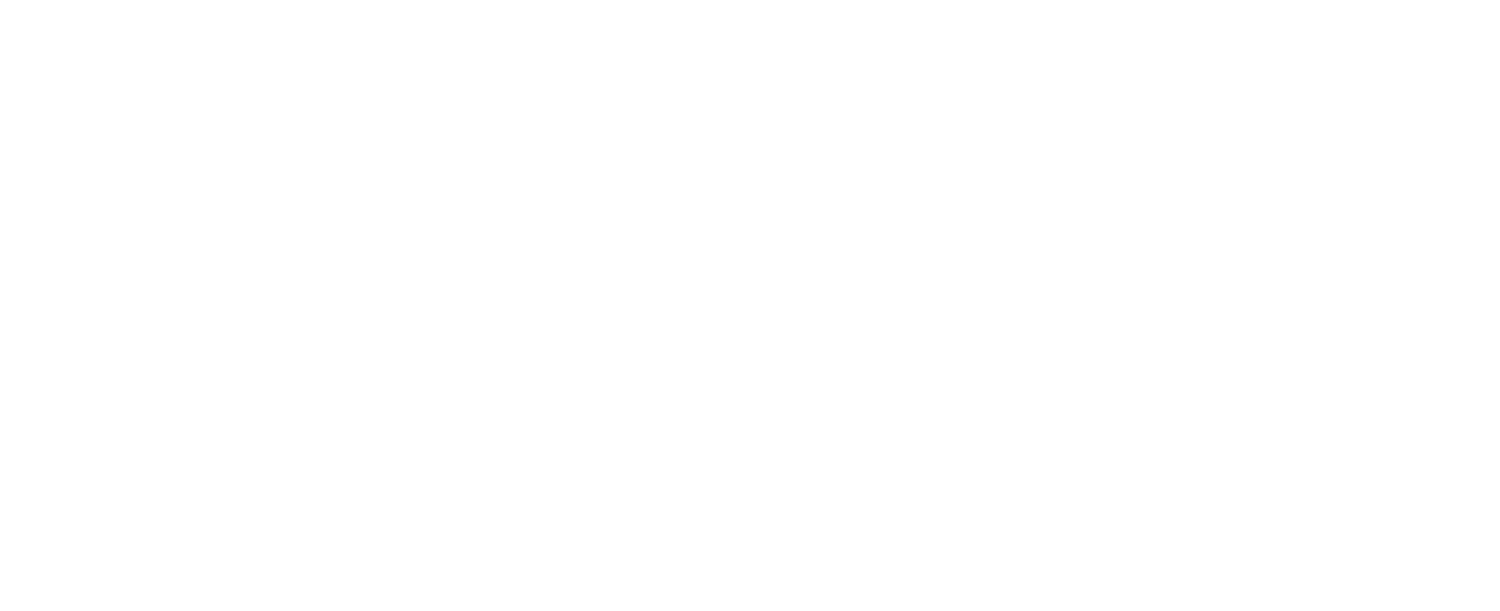 Auto Detailing Chicago – Dynamic Detailing Chicago