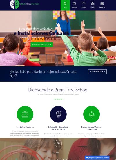brain-tree-school