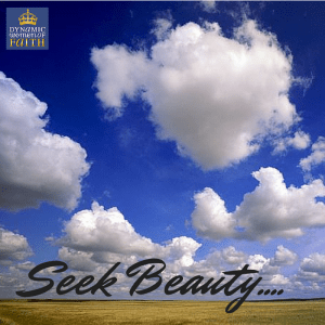 The Power of Seeking Beauty