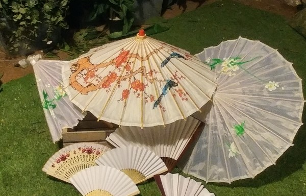 Paper Fans and Parasol Set