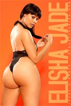 Best of 2012: DynastySeries Model Index - #13-#8