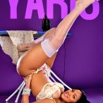 Yaris Sanchez: Provocateur Pin Up - courtesy of Del Anthony