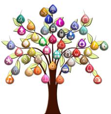 arbre cartes mentales