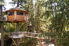 southern oregon, treehouse architects, david delaney