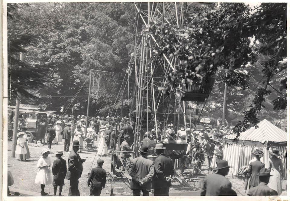 linn county pioneer picnic