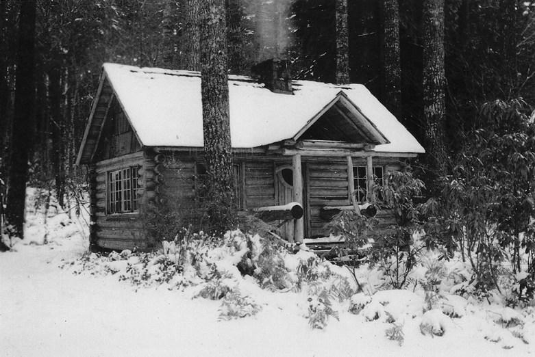 Baileys-Steiner-Cabin-A