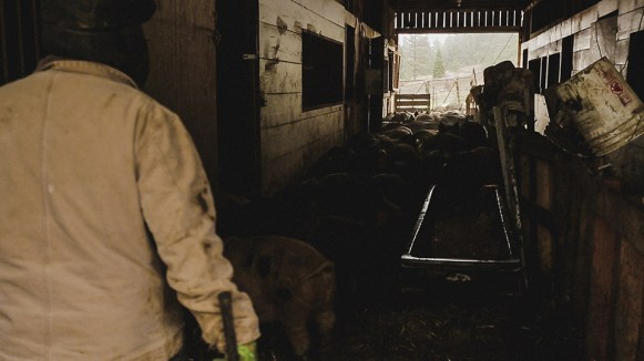 1859-Jan-Feb-Pachamama-Farm-Bradley-Lanphear-67