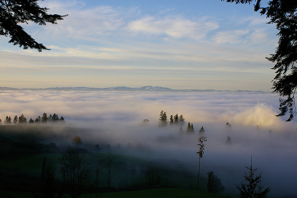 Above-the-fog