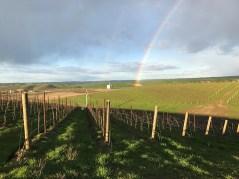 eritage-rainbow