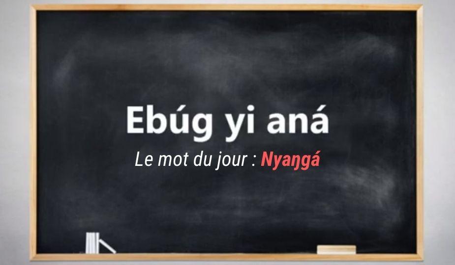 apprendre_ewondo_mot_du_jour1_nyanga1_dzaleu_tuto_ekang