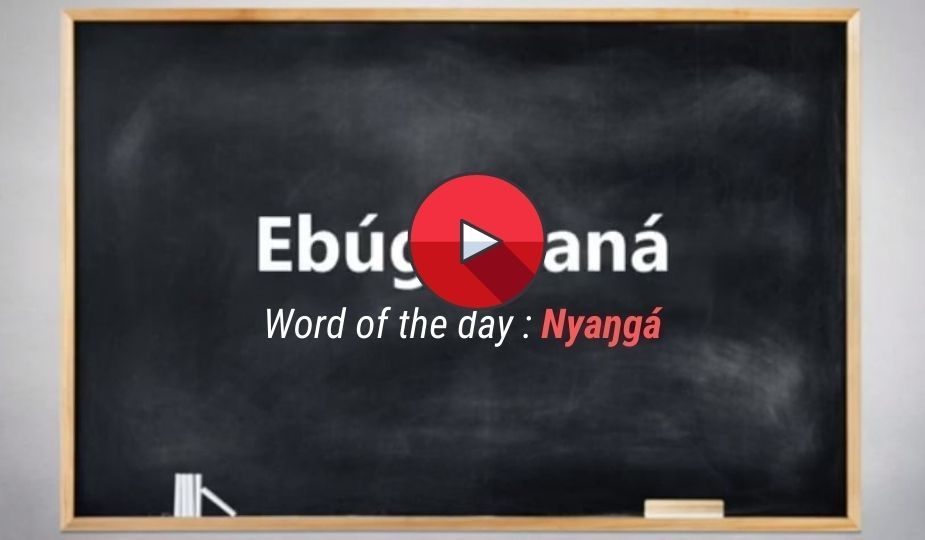 Dzaleu tutorial video : I learn Ewondo - Word of the day : Nyanga
