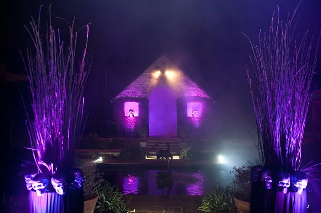 Spooky Spot Halloween Lights