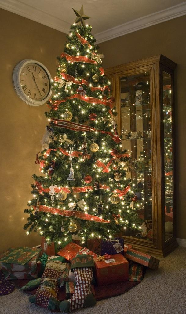 Colay's Tree