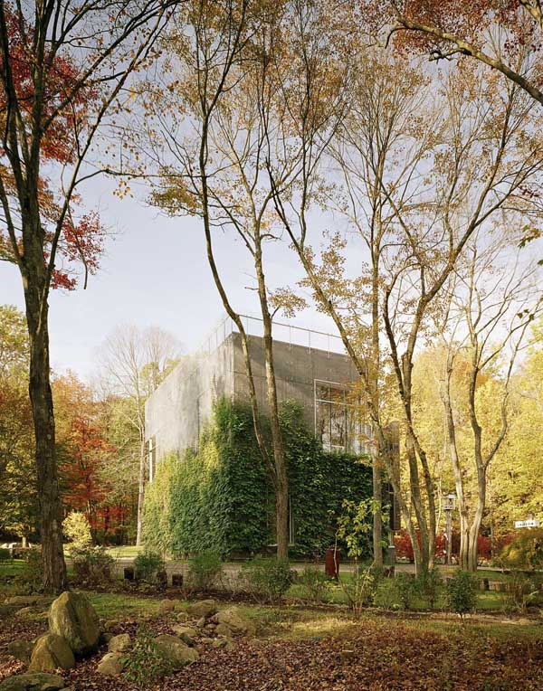art-barn-robert-young-architects-05