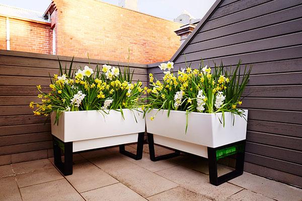GlowPear-self-watering-planter-1