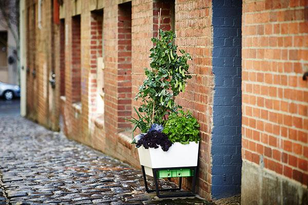 GlowPear-self-watering-planter-2